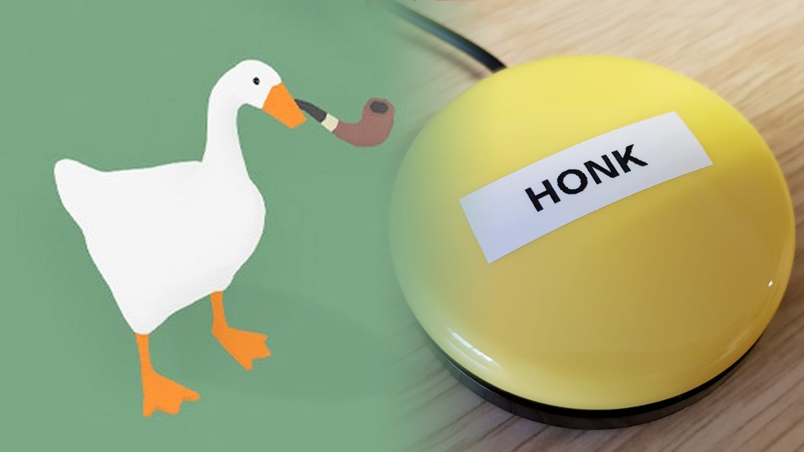 A goose and an accessibility button