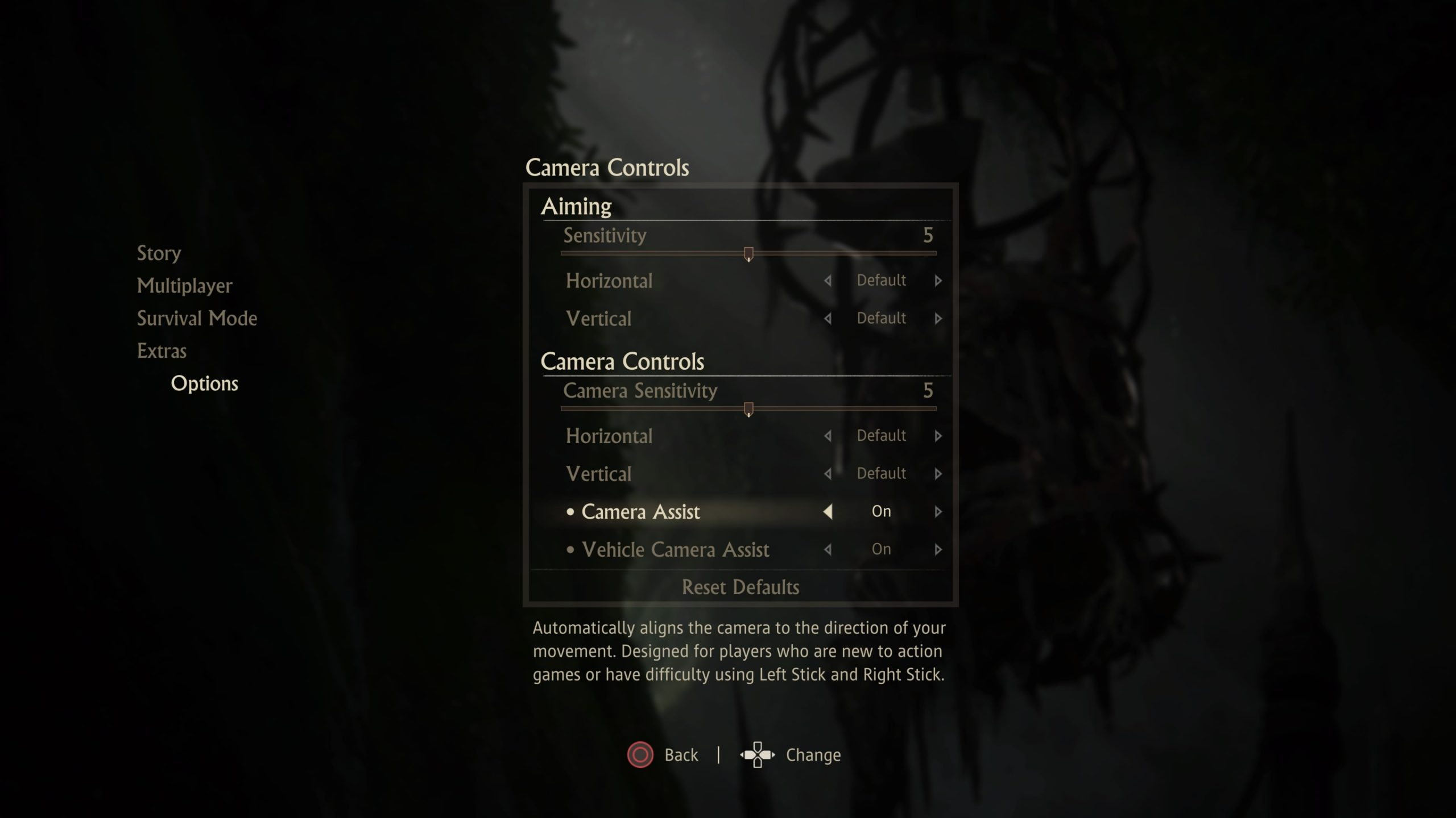 Screenshot of the list of settings found in the Camera Controls sub-menu