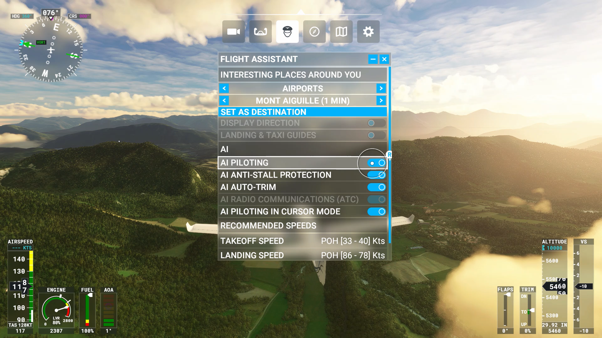 A screenshot of the Flight Assistant options.